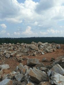 Ron Coleman's Crystal mine, Jessieville, AR