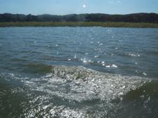 Buchanan Dam, TX : Lake Buchanan